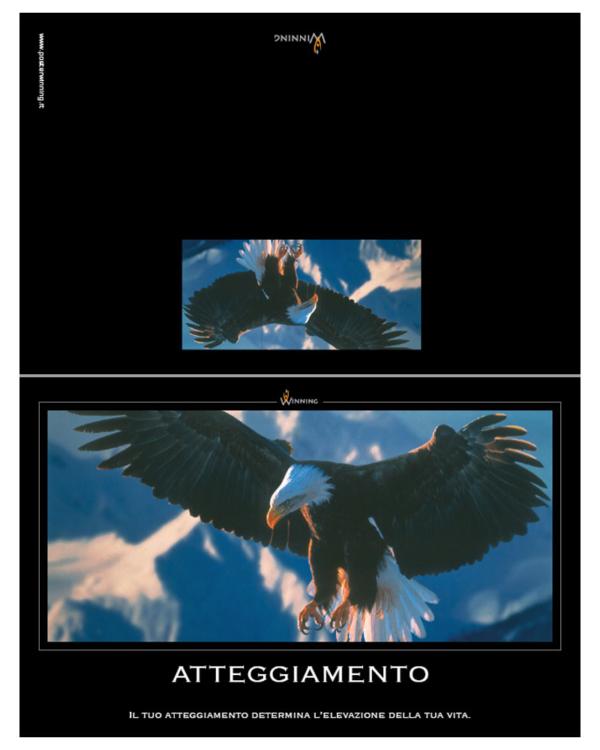 Atteggiamento - Aquila