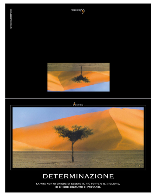 Determinazione - Deserto