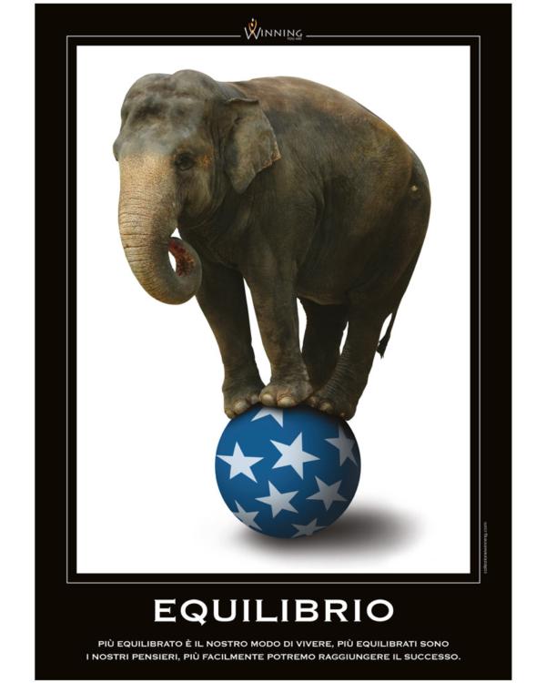 Equilibrio - Elefante