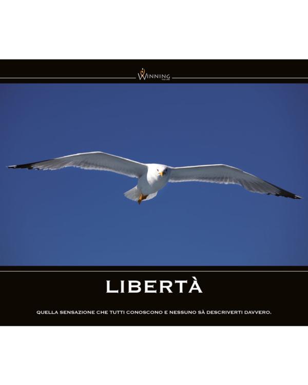 Libertà - Gabbiano