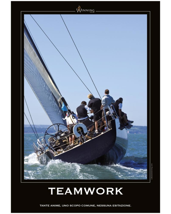 Teamwork - Vela